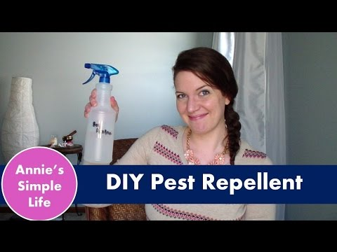 Cheap Home Bug Repellent