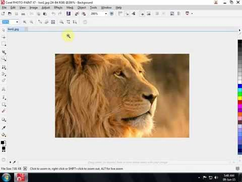 Create a transparent background in Corel Photo Paint 7