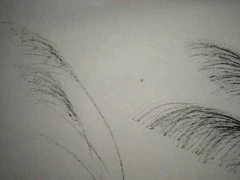 Japanese Brush Painting: How to paint pampas grasses (2)