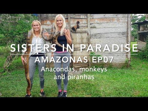 Amazonas, anacondas, monkeys and piranhas ep07