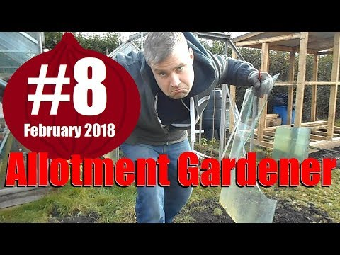 Allotment Garden 2018 #8 - Planting Onion Sets & New Greenhouse Base