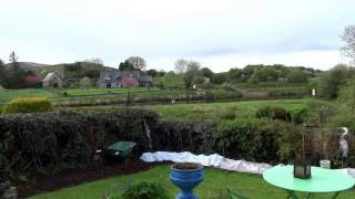 Download Otter River Moy Foxford Video