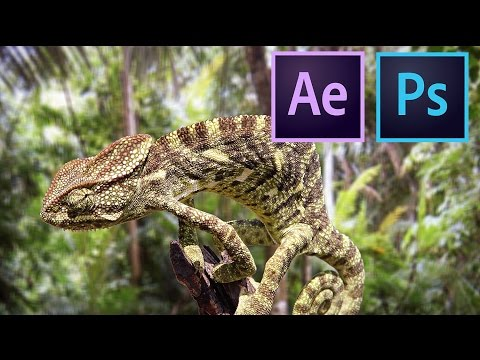 How to make your photos look 3D - After Effects Parallax Tutorial