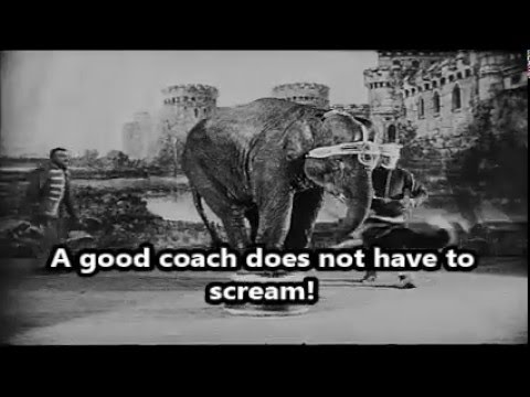 Parents, Coaches, & Other Problems...an AAU Documentary
