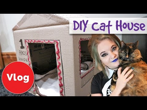 How to Build a Cardboard House for Cats - DIY Home Tutorial - Cat Crafts