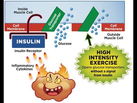 The 15 Minute Workout To Fix Insulin Resistance (Or Pre-diabetes)