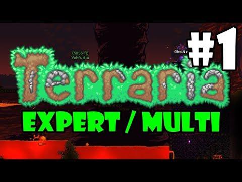Expert / Multi - Terraria Full Playthrough - Part 1 - SETTLING IN
