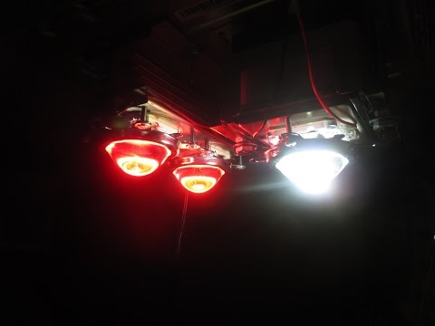 DIY High Powered LED Grow-Light