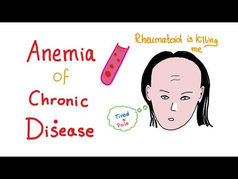 Anemia of Chronic Disease, All you need to know!
