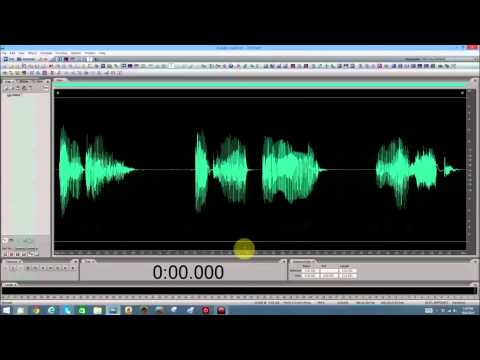 Adobe Audition - Basics - Lesson 20 - Reverse Echo/Reverb