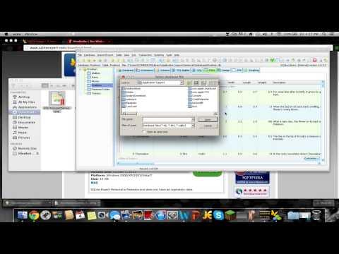How to get Mewtwo to spawn! Pixelmon database (MAC)