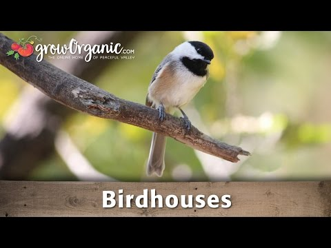 How to Utilize Birdhouses in Your Garden