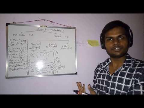 standard amino acid and its tricks
