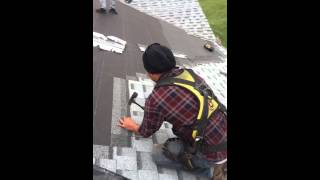 The best roofer in action