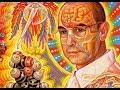 PSYCHEDELICS Tools For Spiritual Awakening mp3