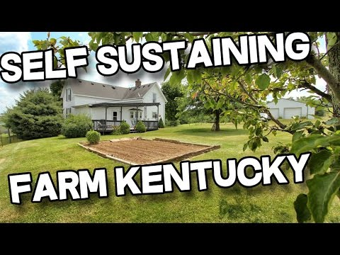 14+ acres, barn, pond, creek, Sustainable Farm For Sale in Kentucky