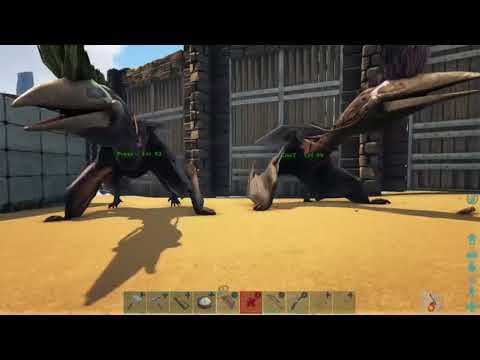 ARK: How to get quetz saddle admin