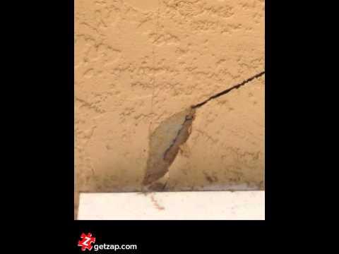 How To Repair A Stucco Crack #diy