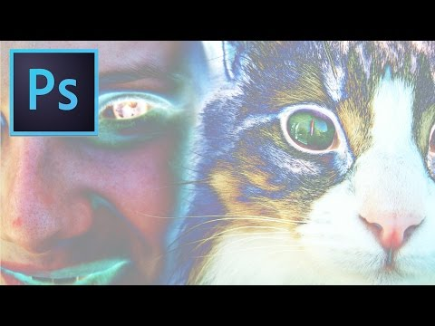 Adobe Photoshop CC Tutorial: How to Invert A Photo's Color