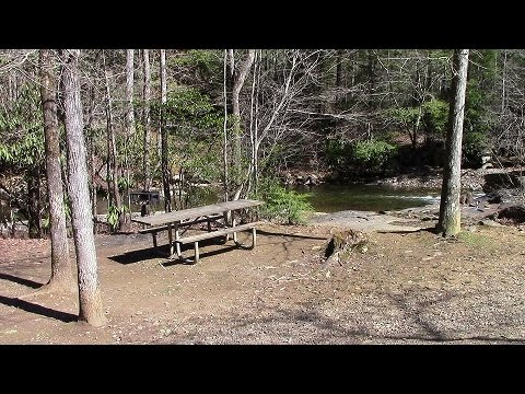 Fires Creek Picnic Area  in our Class B RV