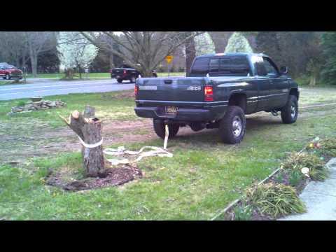 Stump Pulling
