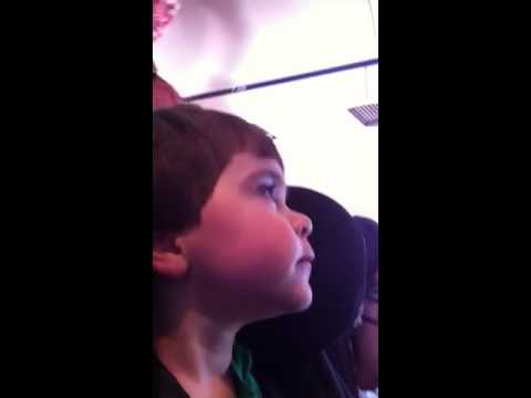 American Airlines 2 year old Flight Attendant helper!