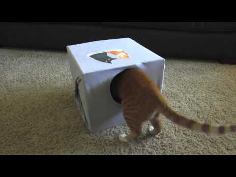 How To Make a CAT CAVE!