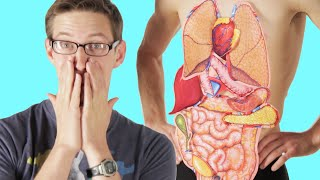 Adults Try To Label The Human Body