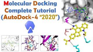 Molecular docking for Beginners | Autodock Full Tutorial | Bioinformatics