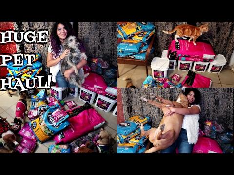 HUGE PET HAUL! DOGS, CATS, HERMIT CRAB SHELLS, + MINI DOG UPDATES
