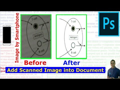 Improve a Scanned Copy/Clicked Image using Photoshop and Add to Document