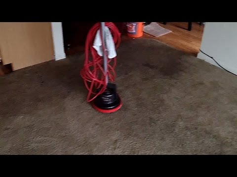 Cleaning Carpet with Tide Laundry Detergent and Oreck Orbiter