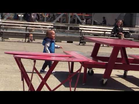 Child having fun chasing pigeons - cries out loud when father bring him back  5-30-2018