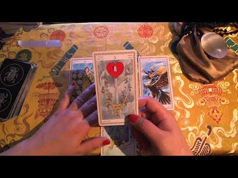 Update on Michael Cohen case in NY | Tarot Reading
