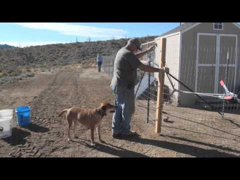 GardAnimal Welded Wire Fence