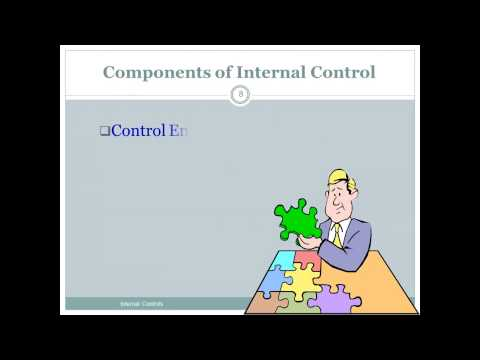 Audits of Internal Control & Control Risk - Prof. Helen Brown