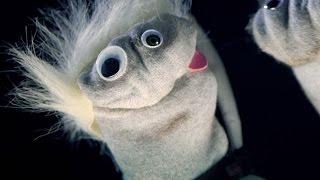 Drowning Pool - Bodies (Sock Puppet Parody)