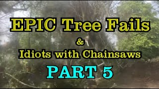 EXTREME Tree cutting fails and idiots with chainsaws, Tree falling