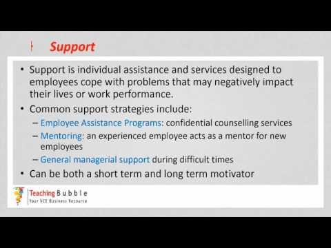 VCE Business Management - Motivation Strategies Pt 2