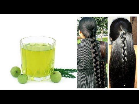 How to Make Amla Hair oil at Home   Grow your hair longer and Stop Grey Hair Very Fast