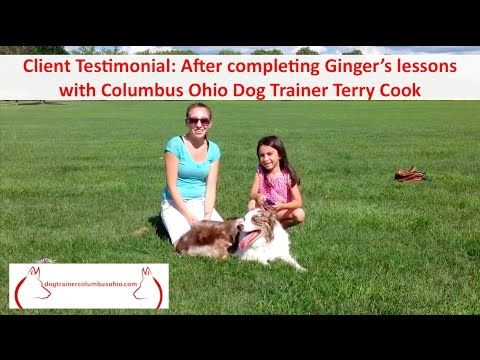 Top Columbus Ohio Dog Training by Terry Cook: Client Testimonial After Completing Dog Training