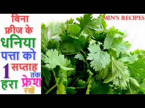 बिना फ्रीज के | How to Keep Coriander Leaves Fresh for a Week without Fridge | How to Store Dhaniya
