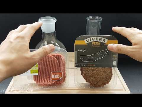 VEGAN Vs MEAT - STOMACH ACID EXPERIMENT!!