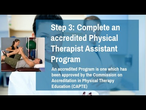 How To Become A Physical Therapist Assistant? PTA Requirements