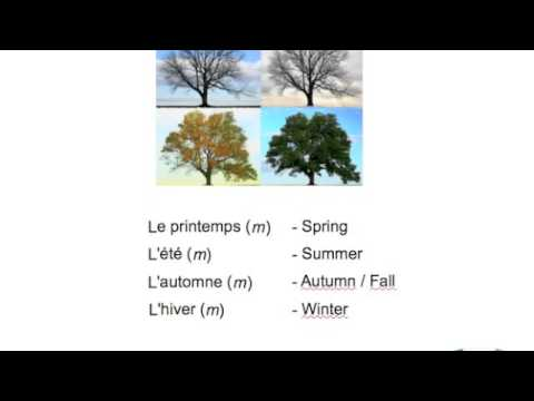 four seasons in French
