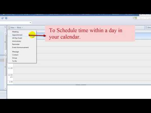How to use the different types of Calendar entries on Lotus Note Mail