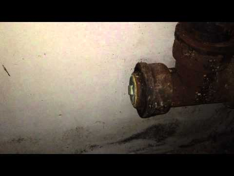 Back Mold Basement Disaster Solved With Mold Remediation Park Ridge, IL