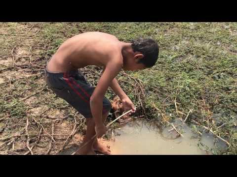 Amazing Fishing - Free line Fishing by smart children in kompong thom | Cambodia Fishing
