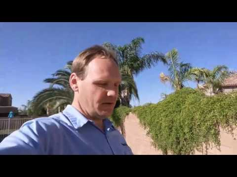 SCORPIONS HIDING IN YOUR FENCE?! - NaturZone Pest Control - Scottsdale Scorpion Control Exterminator
