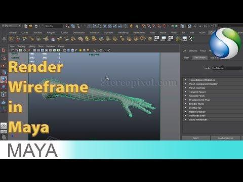 How to Render Wireframe in Maya Software Render